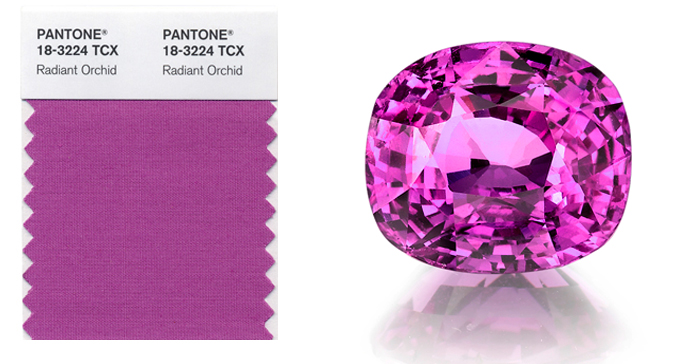 Gems-Radiant-orchid-omi
