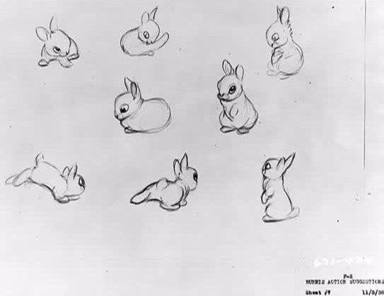 rabbit-interior-design-sample-image